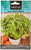 Semillas Aromticas - Albahaca Gigante Genovesa - Batlle