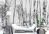 Papier peint mural - Troncs D'Arbres De Bouleau Des Bois - Thème Forêt et arbres - XL - 368cm x 254cm (LxH) - 4 Parts - Imprimé sur 130g/m2 papier intissé EasyInstall - 1X-1211795V8
