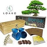 Bonsai Tree Kit. Includes Pots, Seeds, Soil Pellets, Markers, Instruction Booklet. DIY Bonsai Growing Kit. Beginner Friendly