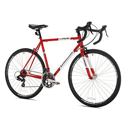9. Giordano Libero Acciao Road Bike