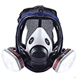 Holulo Organic Vapor Full Face Respirator With Visor Protection For Paint, chemicals, polish welding protection