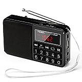 PRUNUS J-429SW Radio Portable FM/AM(MW)/SW/USB/Micro-SD/MP3, Poste Radio...