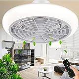 Ventilateur de Plafond Avec Telecommande et Lumiere Plafonnier LED Dimmable...