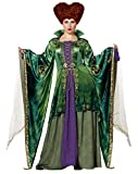 Spirit Halloween Adult Winifred Sanderson Deluxe Hocus Pocus Costume   Officially Licensed - L