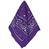 Amscan Bandana, Party Accessory, Purple