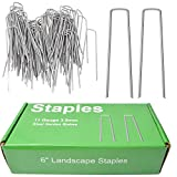 MySit 100x 6-Inch Galvanized Ground Garden Grass Stakes Pins, Lawn Landscape Weed Fabric Staple Heavy-Duty 11 Gauge Anti-Rust Steel Sod Anchor Securing Pegs, 6inch
