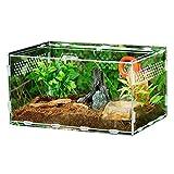 Boîte D'élevage De Reptiles Transparente, Cage Acrylique en...