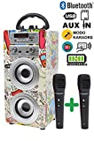 Dynasonic - Enceinte Bluetooth Portable karaoké 10W, 2 micros Inclus, Radio FM,...