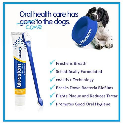 Dog Toothbrush and Toothpaste : Chicken Flavor Tooth Paste with Tooth Brush for Dogs & Cats. Teeth Brushing Cleaner Pet Breath Freshener Oral Care Dental Cleaning Kit. Tartar & Plaque Remover Brushes