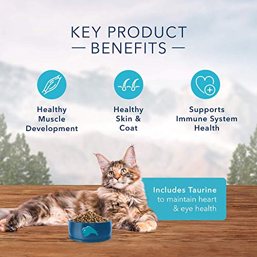 Product Image 5: Blue Buffalo Wilderness High Protein, Natural Adult Dry Cat Food, Salmon 11-lb