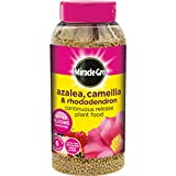 Miracle-Gro Azalea, Camellia and Rhododendron Continuous Release Plant Food 1 kg