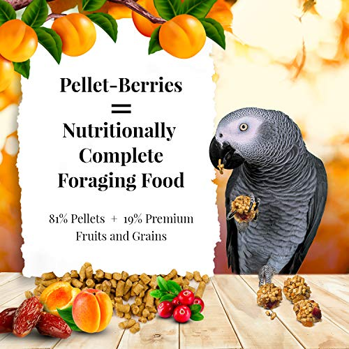 Bird | LAFEBER'S Pellet-Berries Pet Bird Food, Made with Non-GMO and Human-Grade Ingredients, for Parrots, 10 oz, Gym exercise ab workouts - shap2.com