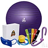 SHAPE UP Home Workout Equipment for Home Gyms   Pilates Ball with Quick Pump, Thigh Master, Hip Trainer & Resistance Bands Set of 5 Included   All in 1 Workout Equipment   eBook & Manual   Bundle of 4