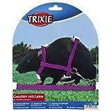 TRIXIE Harnais avec Laisse en Nylon pour furets/Rats, 12–25cm x 8mm, Lot de 4