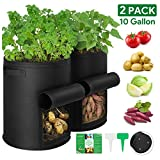 YOUNTASY Potato Grow Bags 10 Gallon with Flap & Handles 2-Pack, Potato Growing Containers, Vegetable Planter Bags for Gardening, Premium Non-Woven Fabric Pots with Plant Labels, Black