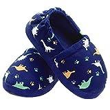Little Kid Dinosaur Slippers for Boys Winter Warm Indoor Slip-on Slippers with Hard Anti-Slipping Sole Size 7-8 US Dinosaur