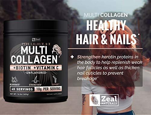 Premium Collagen Peptides Powder (1, 2, 3, 5 & 10) Multi Collagen Protein + Vitamin C + Biotin + Hyaluronic Acid - #1 Collagen Powder for Women Hair Skin and Nails - Marine, Bovine, Chicken & Eggshell 2
