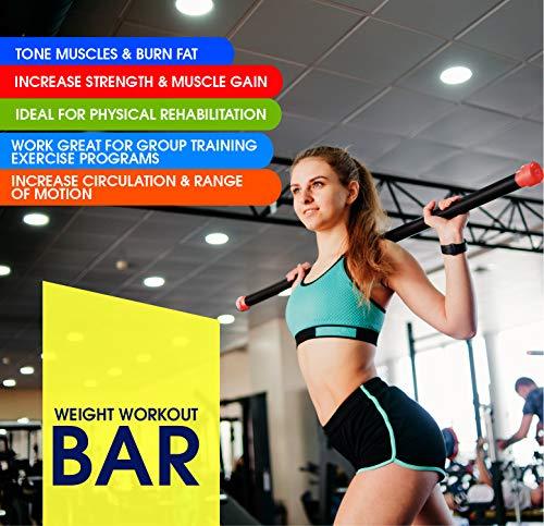 51kgWH9FR6L - Home Fitness Guru