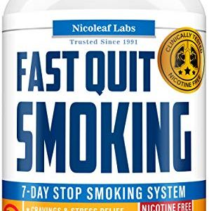 Lung Cleanse & Fast Quit Smoking Aid - Detox Pills for Clear Lungs - Made in USA - Provides Lung Health Support, Asthma Relief & Helps Stop Smoking - Lung Detox & COPD Relief with Mullein & Lobelia 10 - My Weight Loss Today