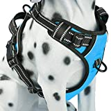 PoyPet No Pull Dog Harness, Reflective Vest Harness with Front & Back 2 Leash Attachments and Easy Control Handle for Small Medium Large Dog (Blue,Medium)