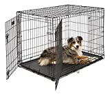 Large Dog Crate 1542DDU| MidWest ICrate Double Door Folding Metal Dog...