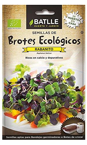 Semillas Ecológicas Brotes - Brotes ecológicos de Rabanito