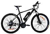 Nilox 30NXEB275VFM1V2 - Bicicleta eléctrica E Bike 36V 11.6AH 27.5X2.10P X6, Motor 36 V 250 W,...