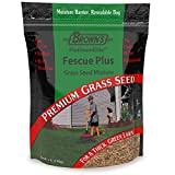 F.M. Brown's PlatinumElite Fescue Plus Grass Seed Mixture - 99.9 Percent Weed Free, Fast-Growing Perennial Seeds for Beautiful Lawns - 1lb
