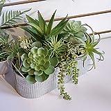 Valery Madelyn 36x25.5x18.5cm Plantes Succulentes Artificielles,Décorations...