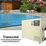 Jacksking Thermostat numérique, Thermostat de Chauffe-Eau numérique...