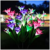 Solar Flower Lights...image