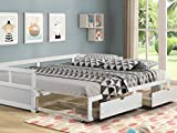 Daybed with Trundle and Two Storage Drawers, Extendable Wood Twin Size Trundle Daybed with Roll Out Bed Frame, Teens Adults Dual-use Sturdy Sofa Bed for Bedroom Living Room (White)