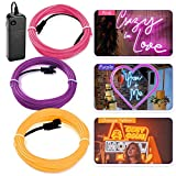 RioRand Neon Light,EL Wire Lights,Glowing Strobing Electroluminescent Light w/Battery Pack for Parties Halloween Decoration(5M/15ft)