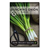 Sow Right Seeds - Heshiko Bunching Japanese Green Onion Seeds for Planting - Non-GMO Heirloom Seeds with Instructions to Plant and Grow a Kitchen Garden, Indoor or Outdoor; Great Gardening Gift