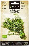 Semillas Ecolgicas Aromticas - Tomillo - ECO - Batlle