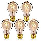 GreenSun Ampoule LED Edison,E27 40W A19 Edison Rétro Lampe Antique Vintage...