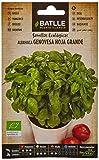 Semillas Ecolgicas Aromticas - Albahaca Gigante Genovese - ECO - Batlle