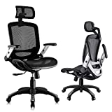 Gabrylly Ergonomic Mesh Office Chair, High Back Desk Chair - Adjustable Headrest with Flip-Up Arms, Tilt Function, Lumbar Support and PU Wheels, Swivel Computer Task Chair
