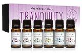 Tranquility Premium Grade Fragrance Oil Gift Set - 6/10ml Bottles - Lavender, Sandalwood, Frankincense, Eucalyptus, Patchouli, Peppermint