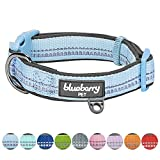 Blueberry Pet 9 Colors Soft & Safe 3M Reflective Neoprene Padded Adjustable Dog Collar - Baby Blue Pastel Color, Small, Neck 12'-16'