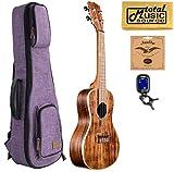 Kala KA-SA-C Solid Acacia Concert 4 String Ukulele w/Purple Sonoma Case Bundle