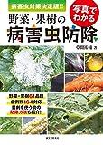 フィンガーライムにつく病害虫のダニ類の防除・農薬・駆除方法を解説【まとめ】 14