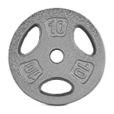 CAP Barbell Standard 1-Inch Grip Weight Plates, Single, Gray, 10 Pound