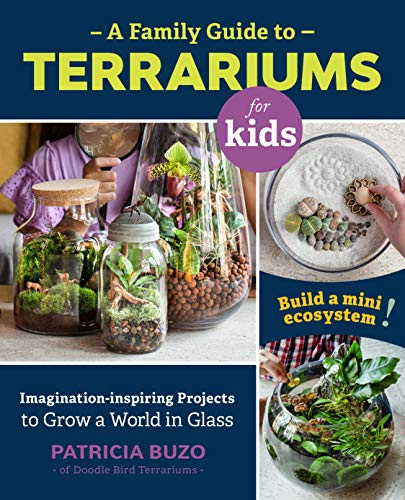 A Family Guide to Terrariums for Kids: Imagination-inspiring Projects...