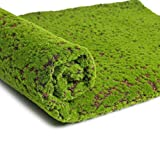 LIOOBO Artificial Moss Mat Fake Grass Turf Lawn Plants Lichen for Home Garden Patio DIY Decoration (Coffee Point)