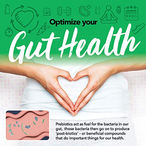 Prebiotic Powder Fiber Supplement: UNFLAVORED Digestive Gut Health Prebiotics by MSPrebiotic. Best Natural Superfood Health Supplements Feed Probiotics for Women, Men. Pre Workout Energy (Gift Box) 3