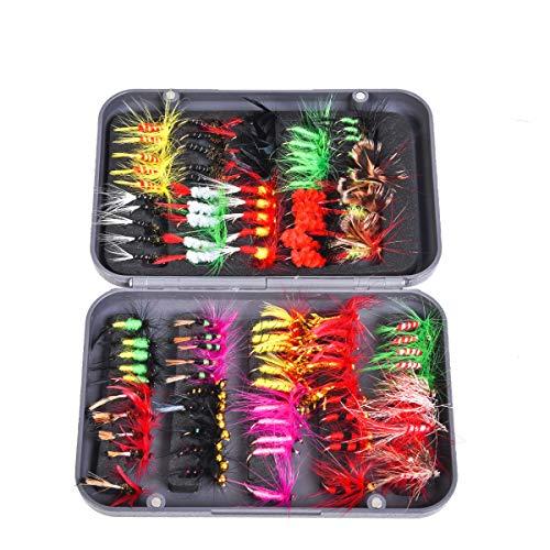 CHSEEO Mouche de Pêche 100PCS Leurre de Pêche Mouche Sèche Boîte d'accessoires de Pêche Poissons-nateurs Crochets de Pêche pour Pêcher à la...