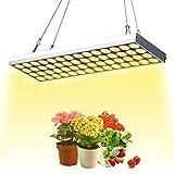 JCBritw 植物育成LEDライト60Wフルスペクトル白色LED 植物成長ライト LED植物パネルライト タイマー機能設定機能付き 調光可能 水耕苗 野菜 花 屋内植物用