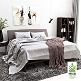 Health Culture Simple Modern Pure 100-Percent Linen Bedding 4 PCS Solid Premium Quality Sheet Set (Queen, Linen)