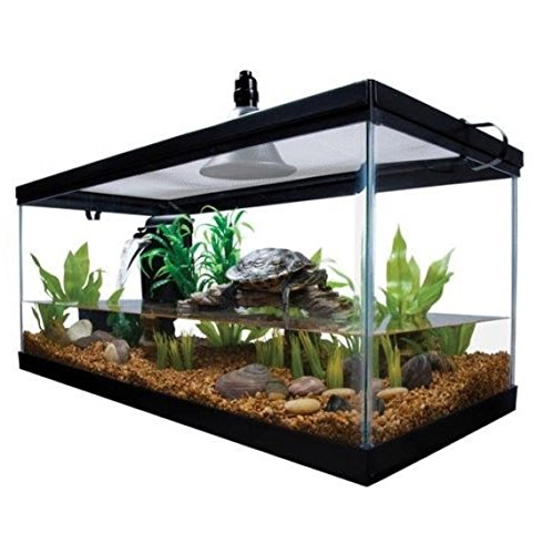 Reptile Habitat Setup Aquarium Tank Kit Filter Screen Lid Bask Lamp Turtle & E Book by STSSLTD